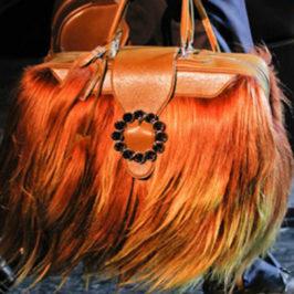 Женские сумки — объект повышенной опасности